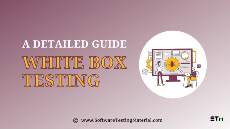 What is White Box Testing and its Types with Examples?